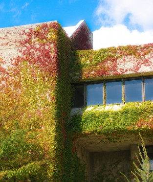 Folsom Library in the Fall