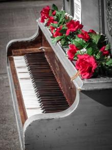 https://www.facebook.com/Pianopushplay