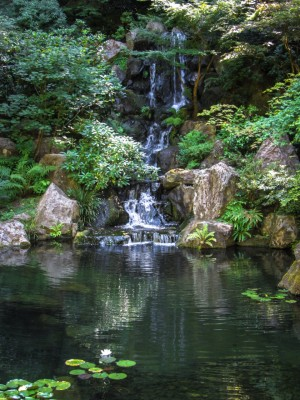 Waterfall at Portland Japanese Garden