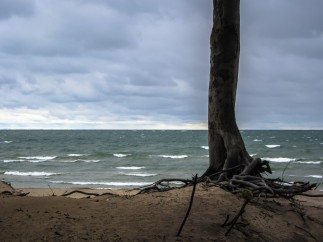 Summer Storm at Lake Erie