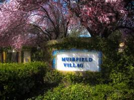 Muirfield Villag