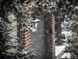 Snowfall at home
