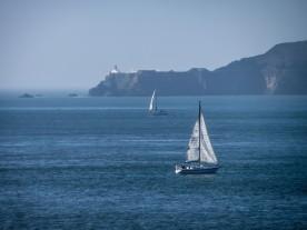 Sailboats on the Ocean