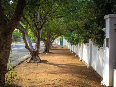 Suburban Sidewalk