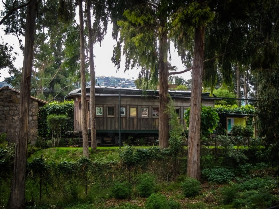 Jungle Traincar