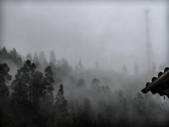 HIllside in Fog