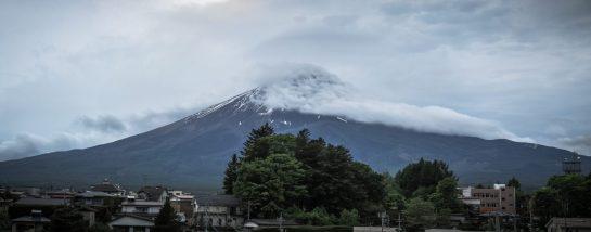A wild Fuji appears!