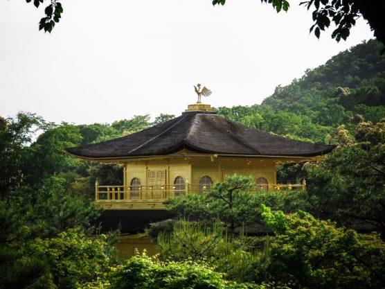 Kinkaku-ji Through the Trees