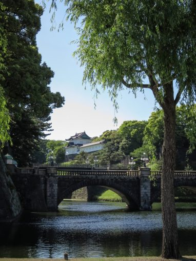 Seimon Ishibashi Bridge, with Tree