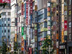 Shinjuku Close-Up
